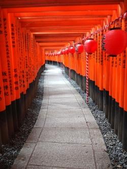 Chaman : recherche d'un esprit allié (chemin de torii au Fushimi Inari Taisha). Soins chamaniques. Esprit totem ; animal totem.